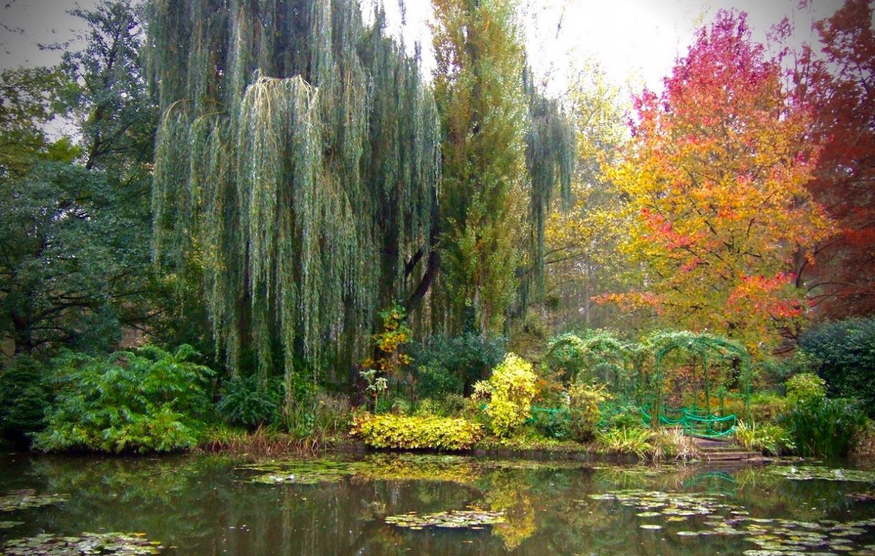 Jim Charlier of Buffalo, who took this photo of Monet's Garden in Giverny, France, will share garden photo tips and techniques April 22 at the spring meeting of the Western New York  Hosta Society. All are welcome to attend. Admission is free. (Photo courtesy Jim Charlier)
