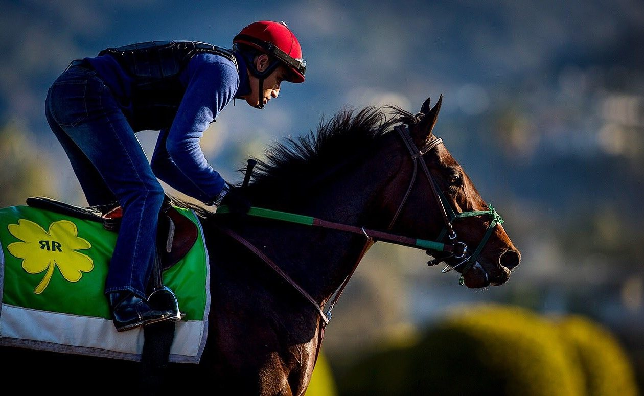 Bolt d'Oro shows up on top of a number of Derby categories.  Photo Credit: Alex Evers/Santa Anita