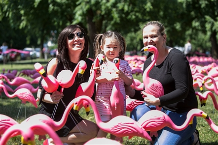 A world record was broken in Buffalo for the longest line of pink, plastic flamingos, certified by Guinness World Records. On Thursday, June 21, 2018, the Buffalo Olmsted Parks Conservancy placed 1,500 flamingos on Bidwell Parkway to celebrate the 150-year mark of Buffalo's Olmsted parks.