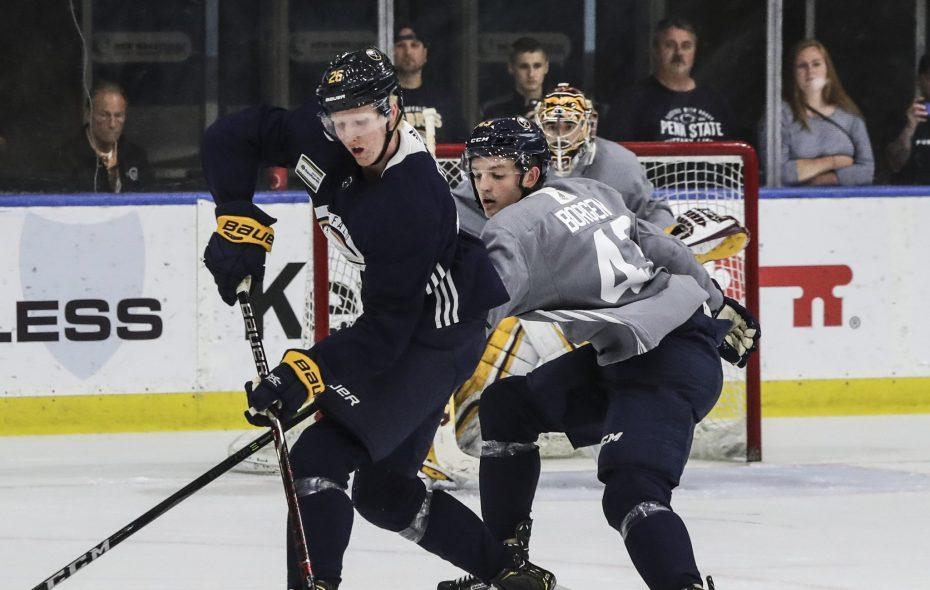 Rasmus Dahlin will make his Sabres preseason debut tonight against Pittsburgh. (James P. McCoy/Buffalo News)