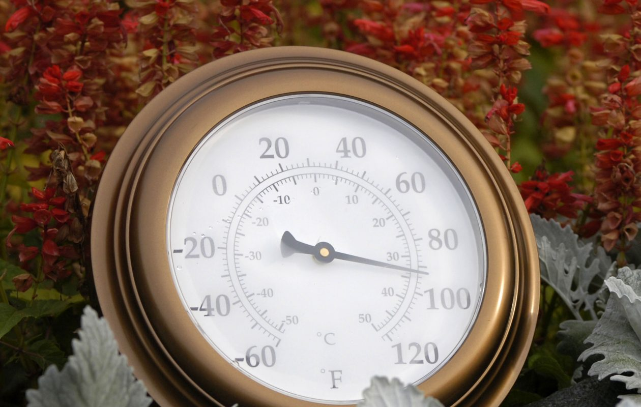 A thermometer shows tempertures near 100 degrees. (Getty Images)