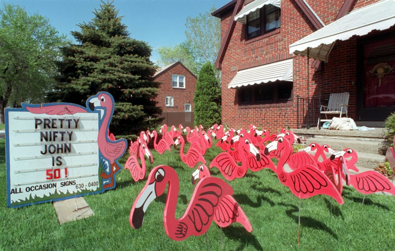 It will take a lot more than this to set the Pink Flamingos record. (News file photo)