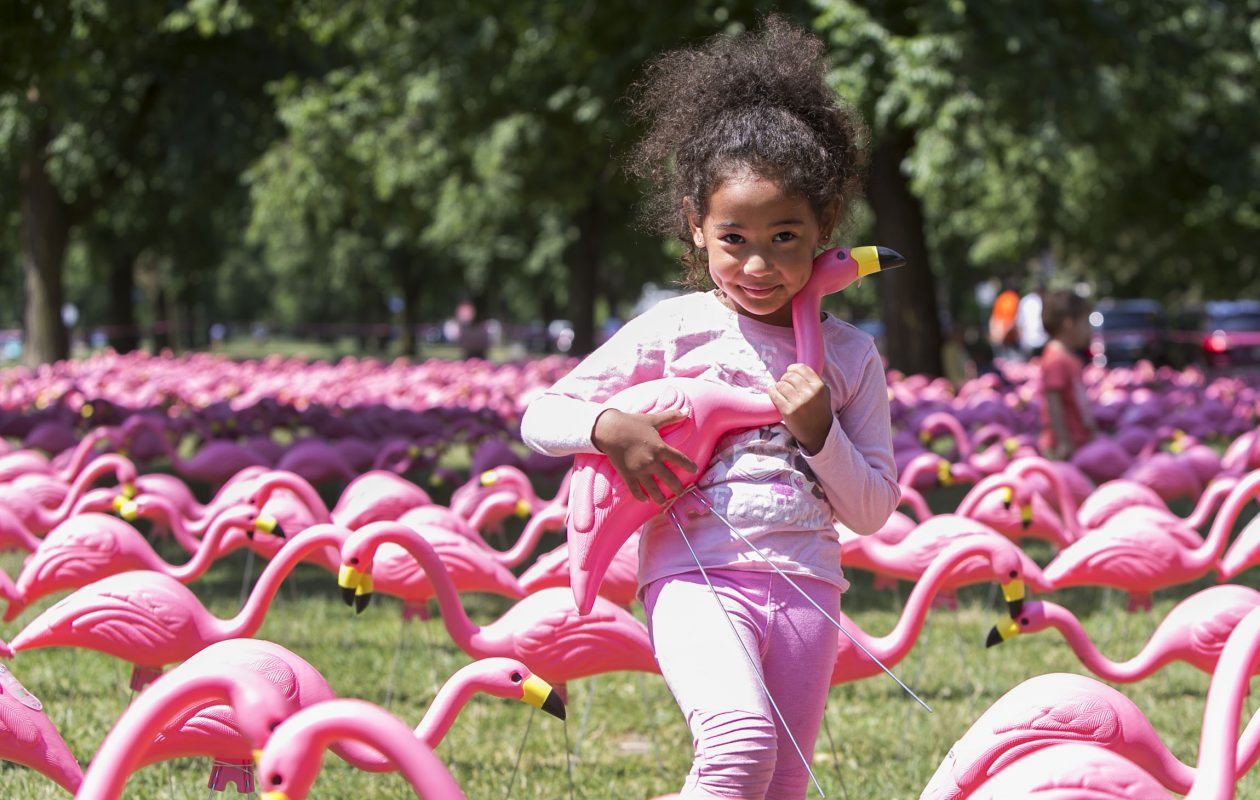 The Guinness World Records confirmed Buffalo set the record for the longest line of pink plastic flamingos on June 21, 2018. Here, Yui Caudle-Saito, 3, cuddles with her favorite flamingo. (Shuran Huang/Buffalo News)