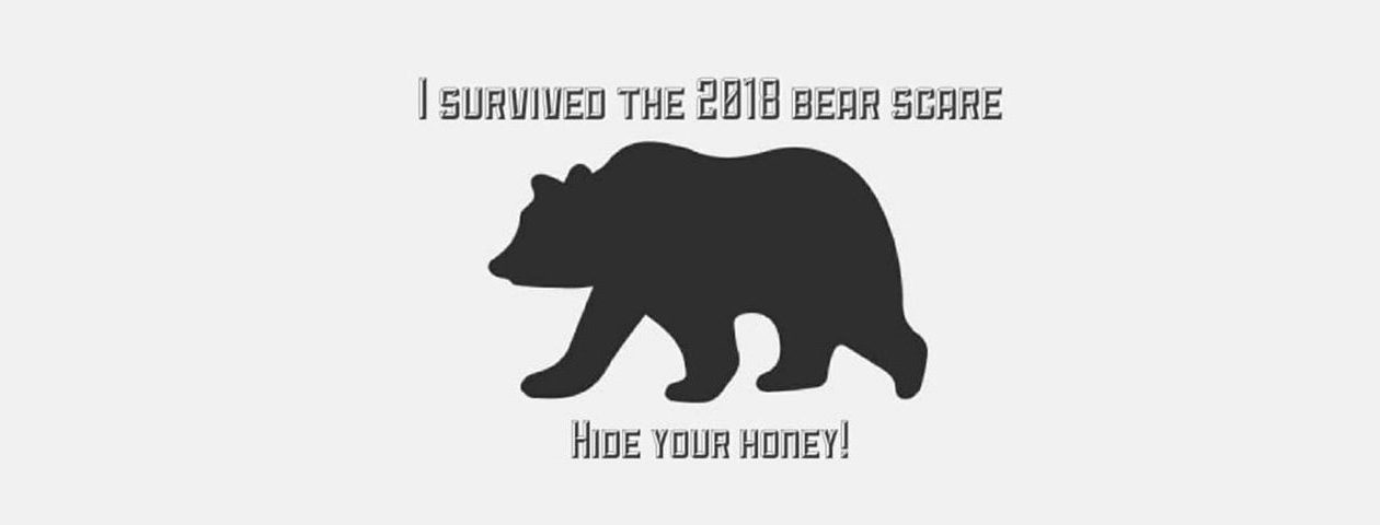 Jay Berent, co-owner of Pulp 716 in North Tonawanda, started selling T-shirts with this image after a bear was spotted in North Tonawanda. (Image courtesy Jay Berent.)