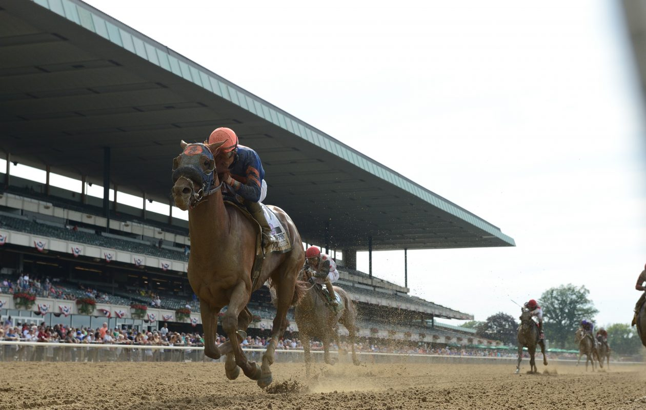 Mind Your Biscuits, co-owned by UB grad Dan Summers, will run in the G1 Met Mile on the Belmont Stakes undercard. Photo Credit: NYRA