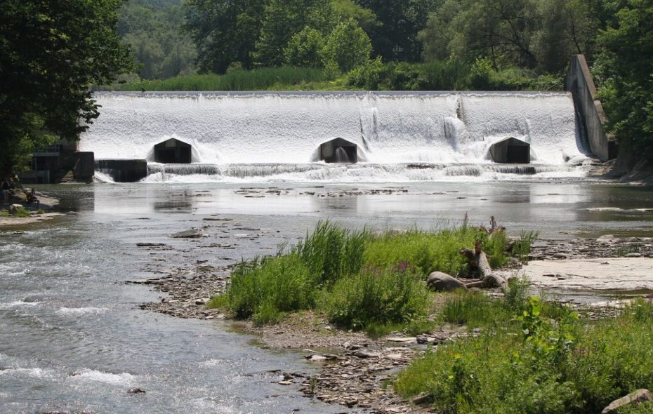 A portion of Scoby Dam will be lowered as part of a multimillion-dollar fishery project in the next few years. (Mark Mulville/News file photo)