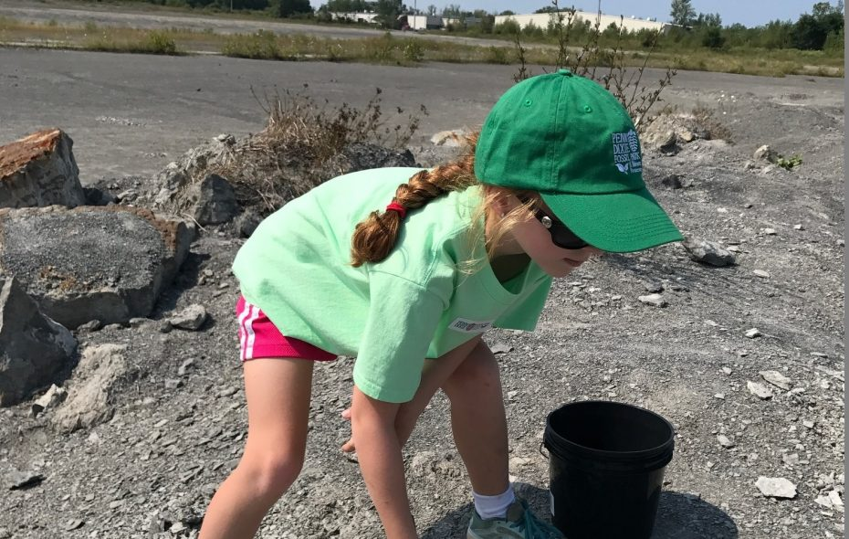 Kids can use a painbrush and small bucket from home to unveil fossils at Penn Dixie Fossil Park and Nature Reserve. (Photo by Toni Ruberto)