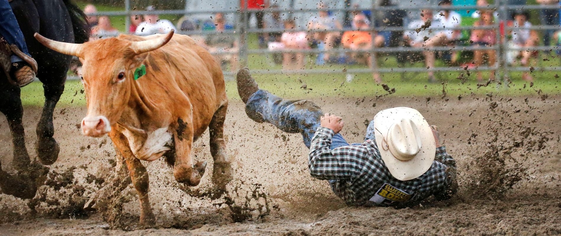 A cowboy falls into the mud after missing a steer at the Ellicottville Rodeo. (Robert Kirkham/Buffalo News)