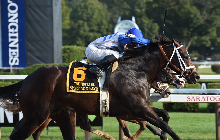 Sporting Chance has two wins over Saratoga Race Course and will challenge four others in Saturday's Jim Dandy. Photo Credit: Susie Raisher/NYRA