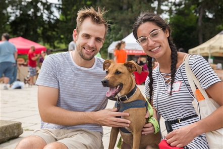 Dog owners converged on Hoyt Lake in Delaware Park for Bark in the Park, which included a dog parade, food trucks and tributes to all things canine, on Sunday, Aug. 19, 2018. The mini event was part of the 150-hour celebration of the anniversary of Frederick Law Olmsted's first stop in Buffalo. Buffalo's Olmsted Parks system is named after the landscape architect.