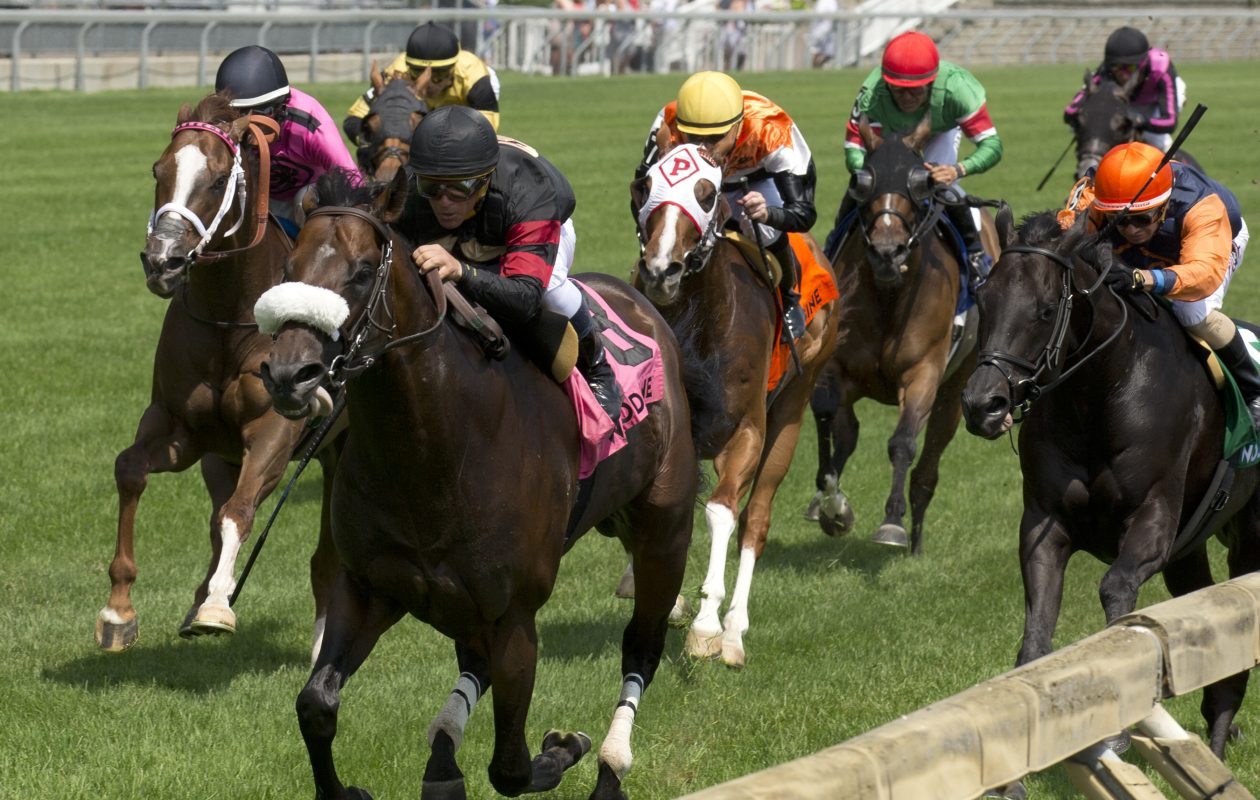 a4a7e478c18 King Edward Stakes winner Delta Prince under Jockey Javier Castellano