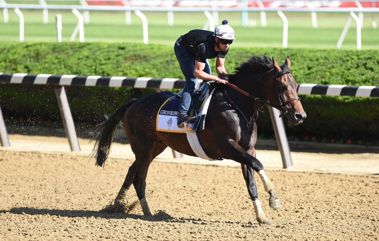 Gronkowski is the 4-1 second choice in Saturday's Travers Stakes. (NYRA/Zoe Metz)