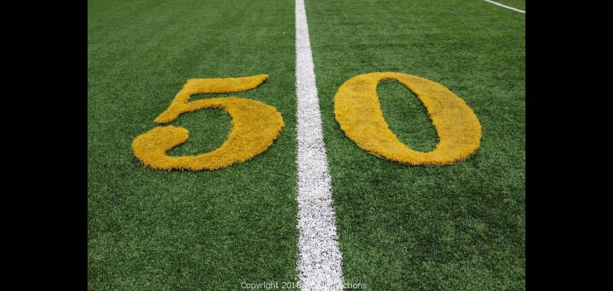 A turf cutout from the Bills' field is among items up for auction. (Cash Realty & Auctions photo)