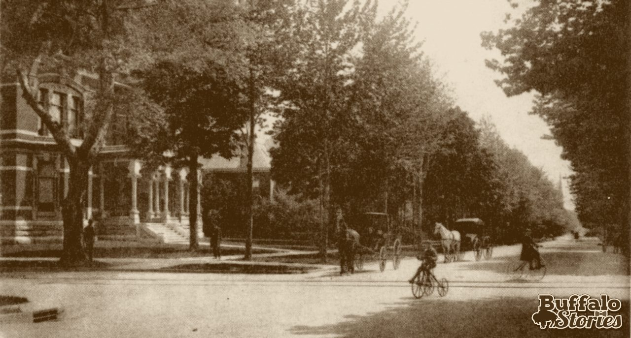 Delaware and Allen Sts. looking north, 1884.