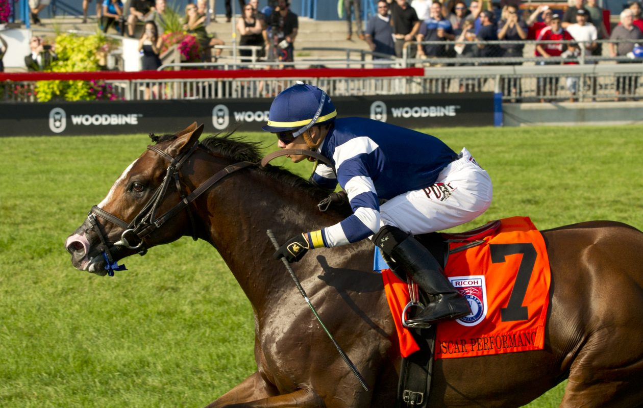Toronto Ont. -- Oscar Performance under Jockey Jose Ortiz, captures the $800,000 Ricoh Woodbine Mile  Photo Credit: Michael Burns Photo