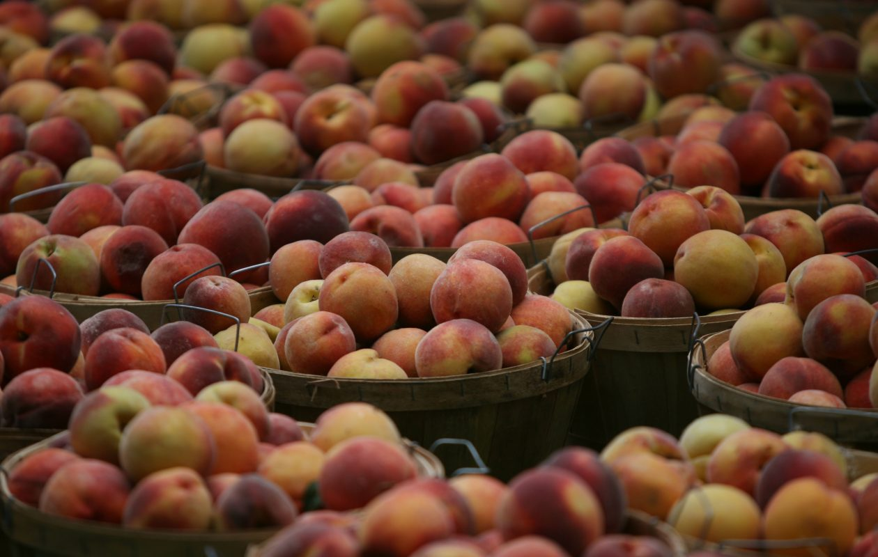 Niagara County Peach Festival organizers say 6.5 tons of locally harvested peaches will be dished out during the event, which runs from 6 p.m. Thursday, Sept. 6 to 11 p.m. Sunday, Sept. 9 at Academy Park in Lewiston. (File photo/The Buffalo News)