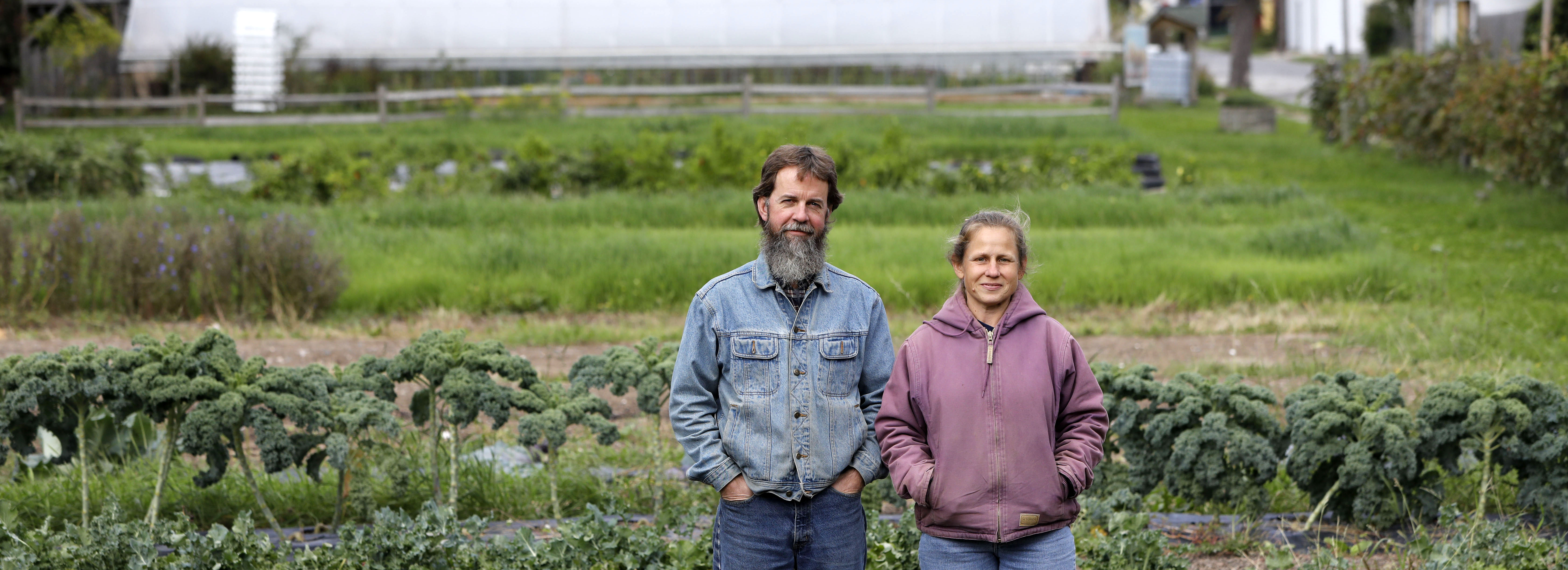 Mark and Janice Stevens started the Wilson Street Urban Farm on a vacant lot behind their home on Fillmore Avenue 10 years ago and have grown it into a fixture of the community. (Derek Gee/Buffalo News)
