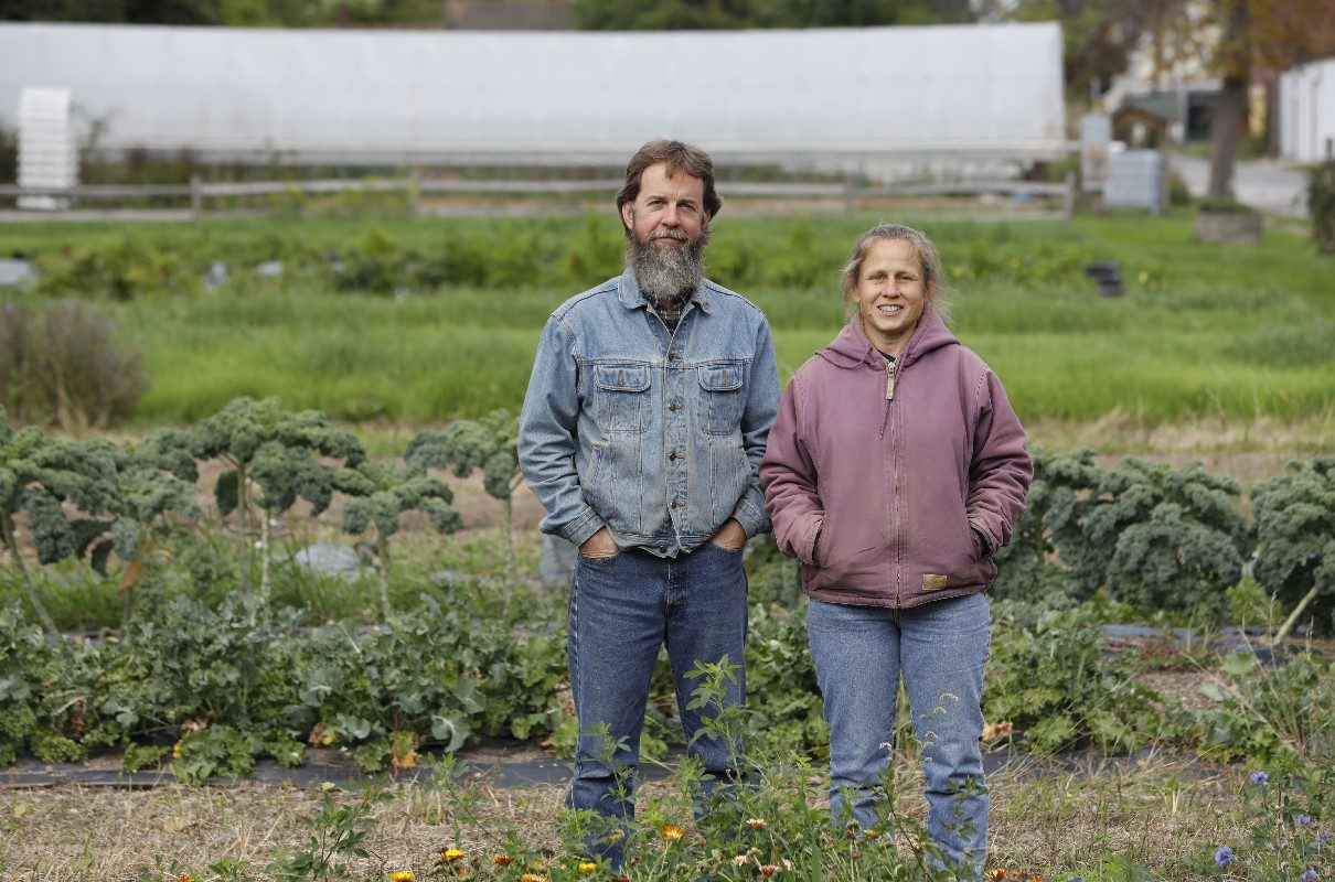 Mark and Janice Stevens started the Wilson Street Farm on a vacant urban lot behind their home in on Filmore Avenue 10 years ago and have grown it into a fixture of the community. (Derek Gee/Buffalo News)