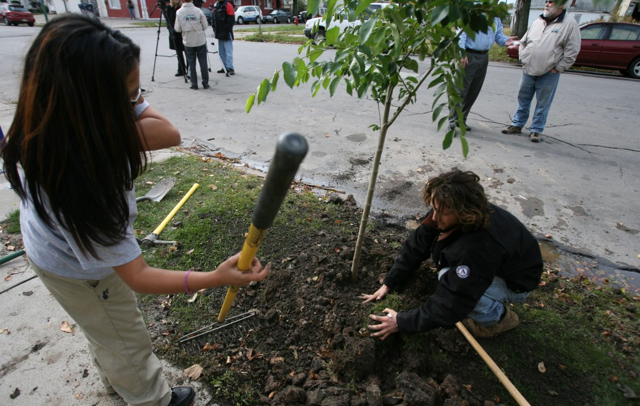 Scenes like this one, where Re-Tree volunteers helped plant an elm tree at the corner of Maryland and Busti in 2013, have taken place repeatedly over the last 12 years. (News file photo)