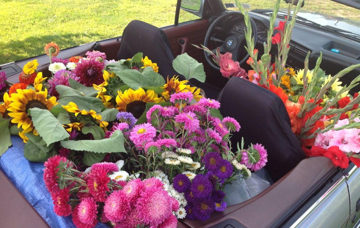 Flowers are available free at The Flower Stand in Springville while supplies last. (Contributed photo)