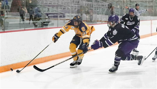 Niagara Purple Eagles 9, Canisius Golden Griffins 6