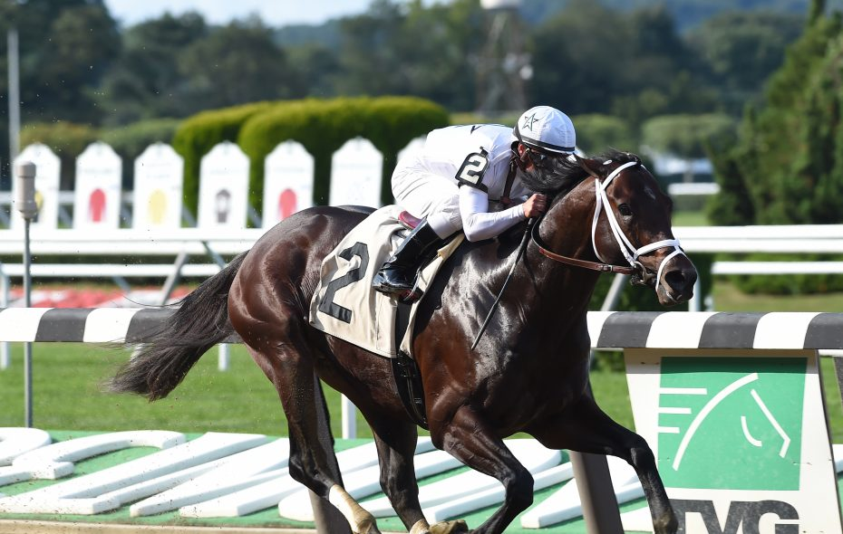 Copper Town will look to provide trainer Todd Pletcher with his fifth Cigar Mile title. Photo Credit: NYRA