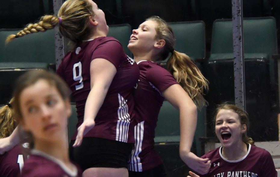 Portville volleyball players on the sideline chest bump following a point scored on the court during the Class C state final against Millbrook. (Jenn March/Special to The News)