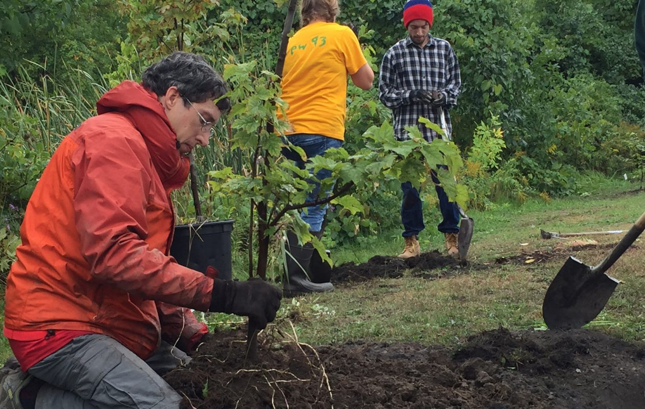 Volunteers with the Buffalo Niagara Riverkeeper organization planted trees and shrubs along Gill Creek in October 2016. (Provided photo)