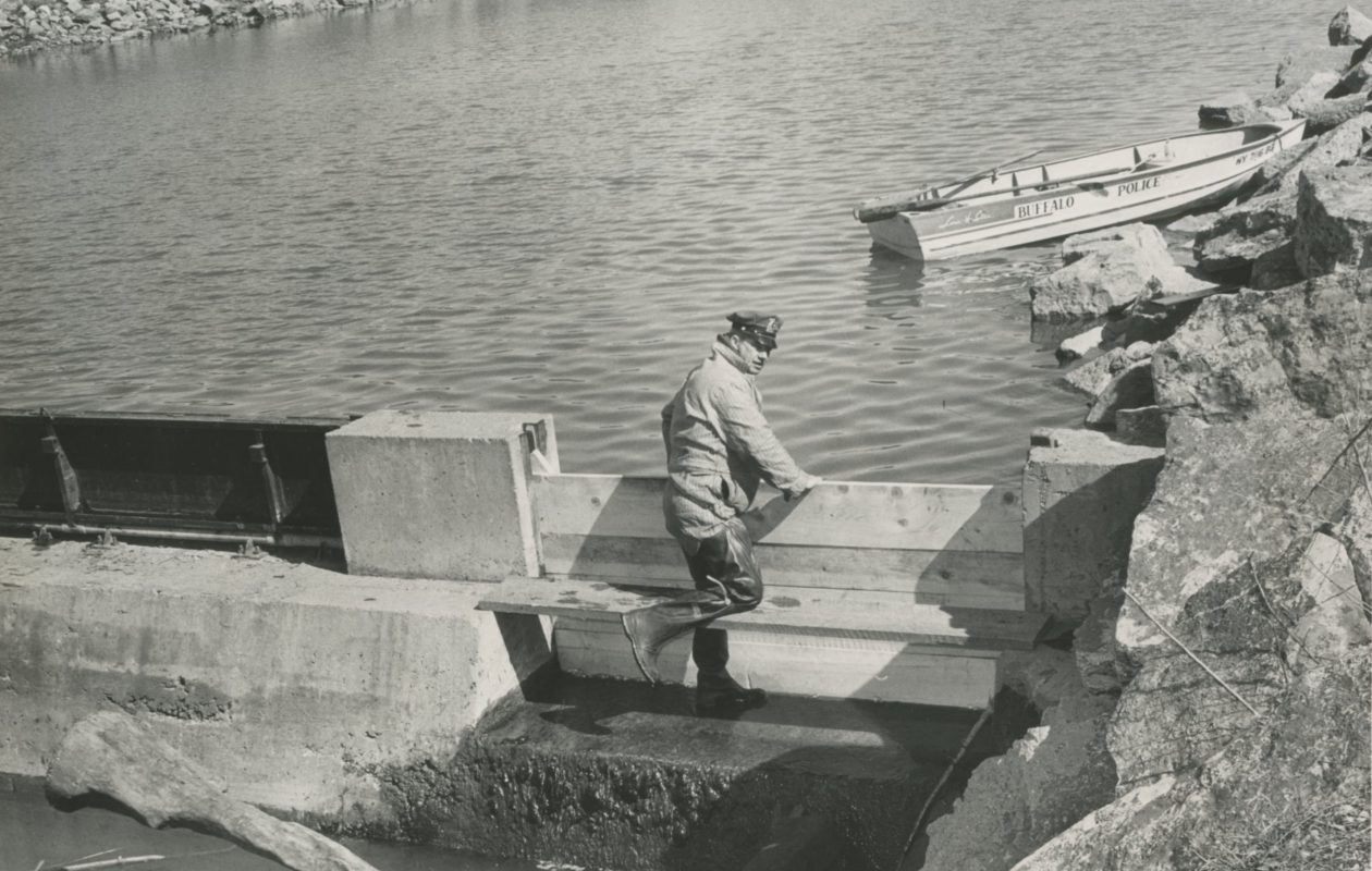 Buffalo Police Officer Thomas Reardon searches Scajaquada Creek for evidence on March 16, 1966, three days after the body of Monsignor Francis O'Connor was found. No arrest was made in the slaying of O'Connor. (Buffalo News file photo)