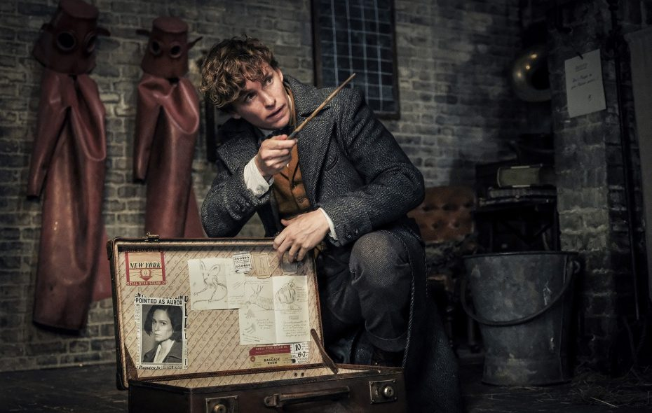 "Eddie Redmayne returns as Newt Scamander in this sequel to the 2016 film ""Fantastic Beasts and Where To Find Them."" (Jaap Buitendijk/Warner Bros. Pictures)"