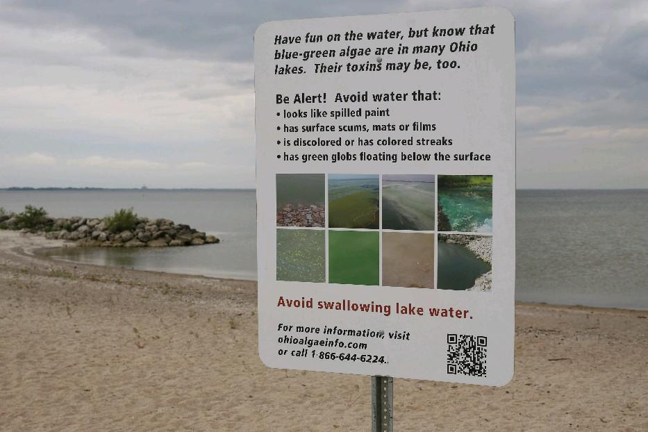 Water regulations proposed by the Trump administration could make algae problems worse in the nation's lakes, including Lake Erie, where this sign was posted in 2013 near Toledo, Ohio. (Derek Gee/Buffalo News)