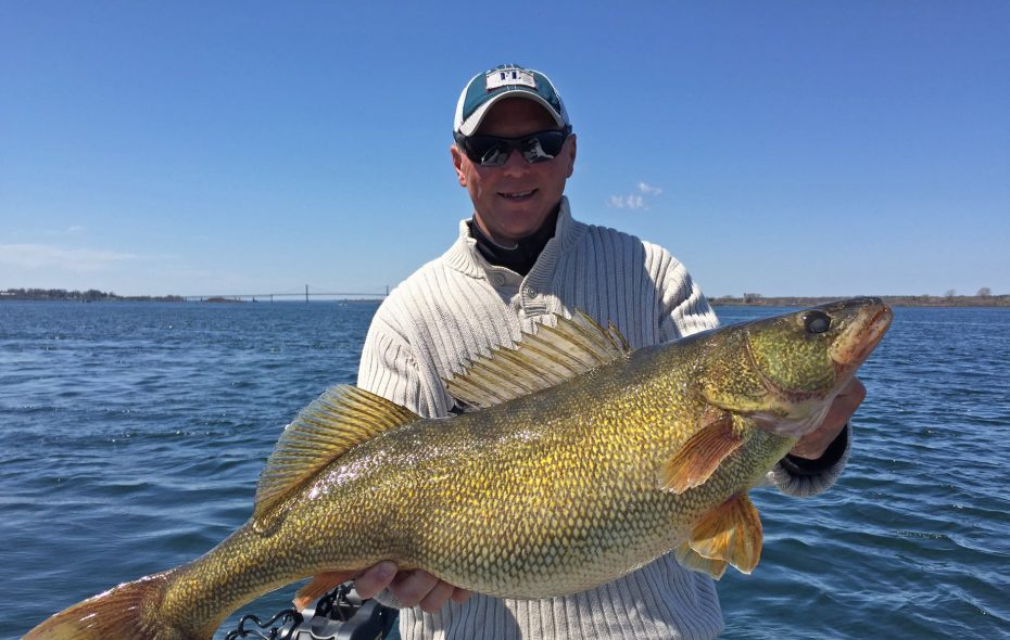 Brian Hartman of Alexandria Bay hauled in the state record walleye from the St. Lawrence River last May, an 18 pound, 2 ounce lunker.