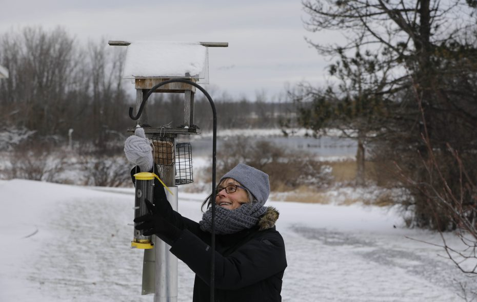 Celeste Morien, president of the Friends of the Iroquois National Wildlife Refuge, fills bird feeders (with seed she purchased herself) on Thursday at the refuge, which is closed due to the ongoing federal government shutdown. (Derek Gee/Buffalo News)