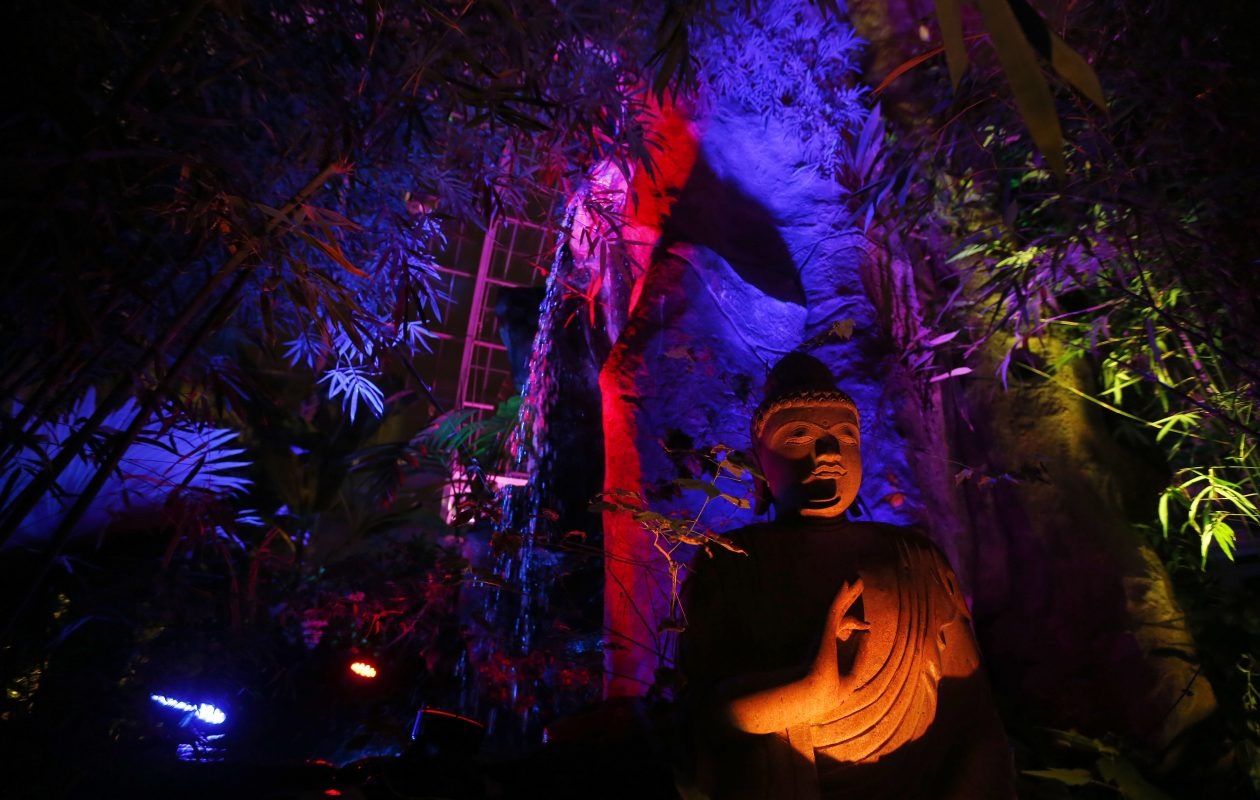 Multi colors light the Asian Rainforest during Lumagination at the Buffalo and Erie County Botanical Gardens Wednesday, January 23, 2019.      (Mark Mulville/Buffalo News)