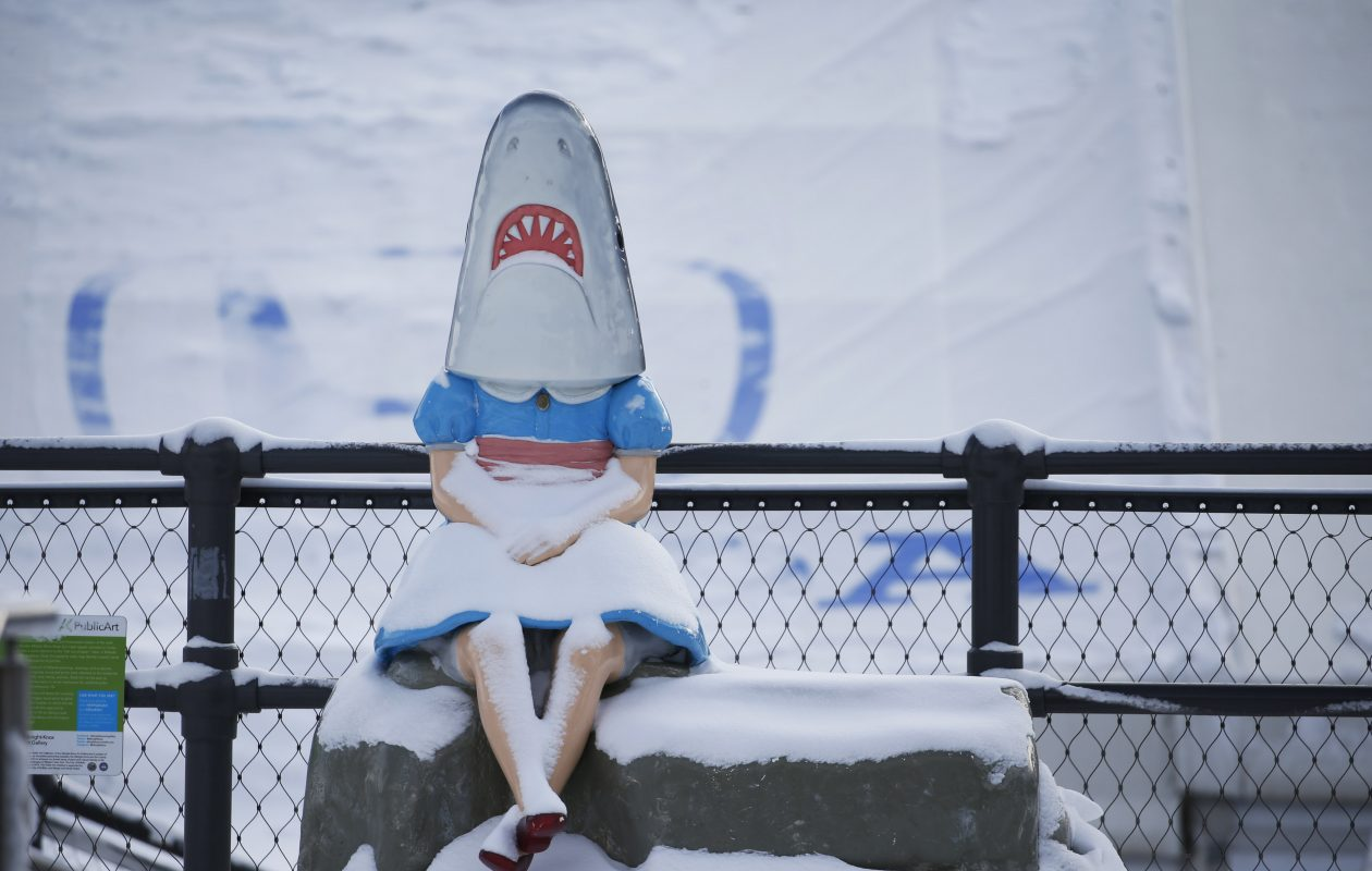 Shark Girl was chilly at Canalside in Buffalo where temperatures dipped into the single digits. (Sharon Cantillon/Buffalo News)