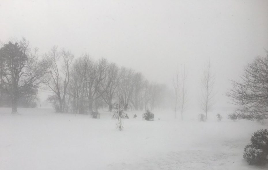 Heavy snow and blustery winds Friday morning on Sturgeon Point Road in Derby. (Jay Tokasz/Buffalo News)