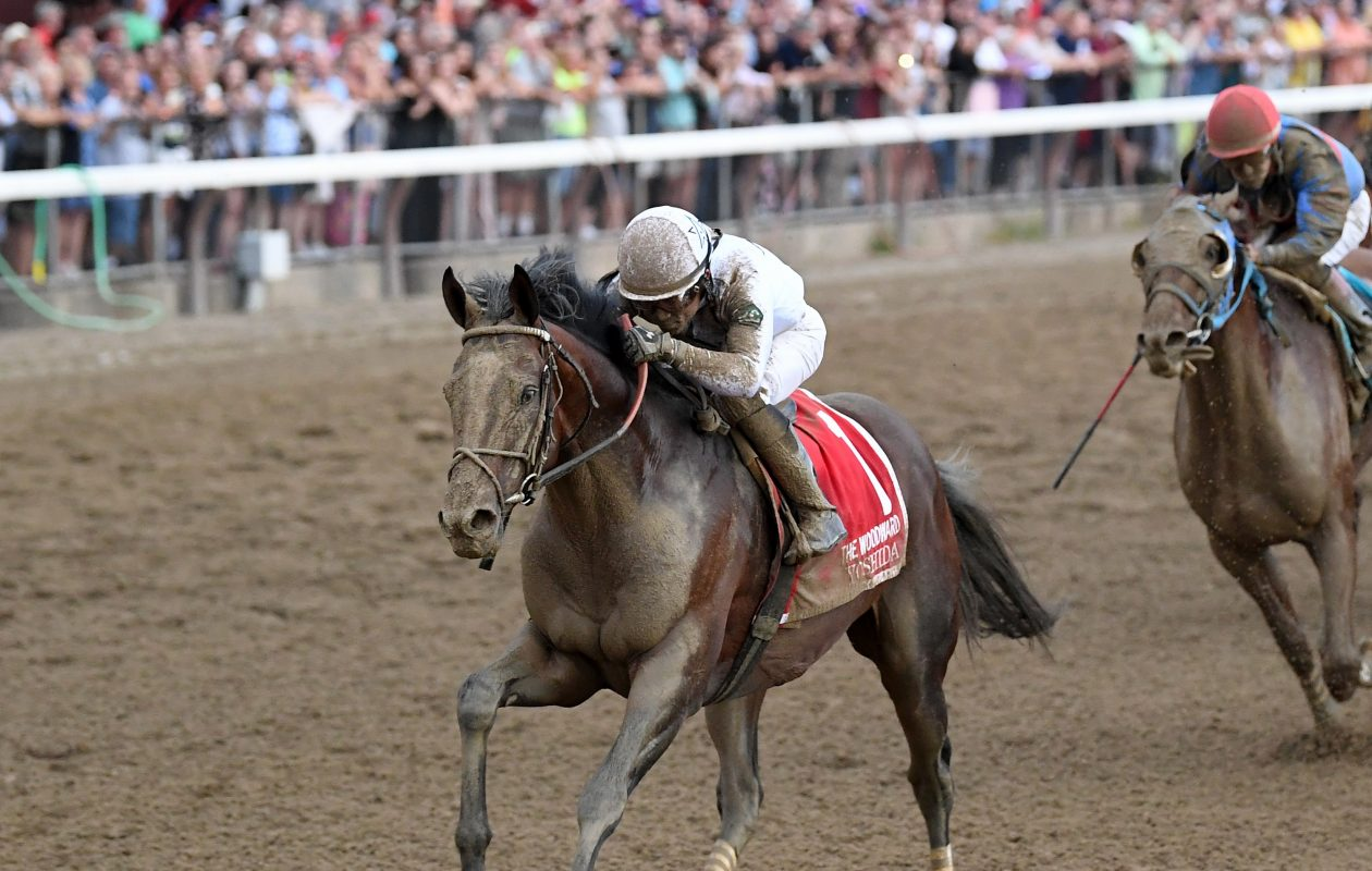 Yoshia, last year's Woodward winner at Saratoga, returns to the turf as the favorite in this weekend's Pegasus World Cup Turf. Photo Credit: Chelsea Durand/NYRA