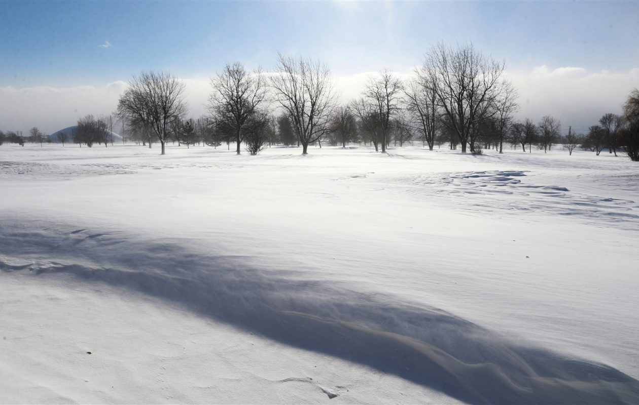 Through sunny skies, the biting wind whips across an open field on Colvin Boulevard in the Town of Tonawanda on Thursday.	Sharon Cantillon/Buffalo News