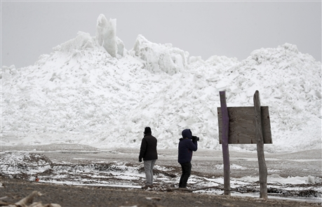 Winds whip WNY, taking out trees and pushing ice ashore