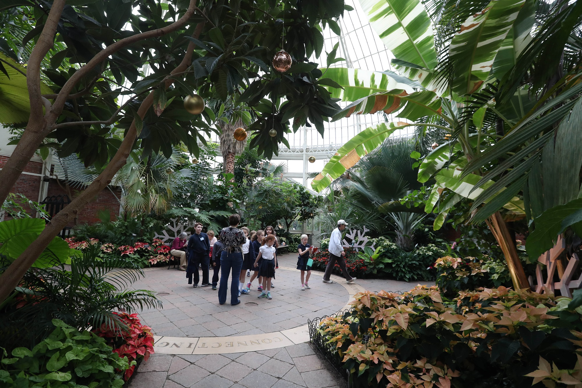 Botanical Gardens to host yoga series