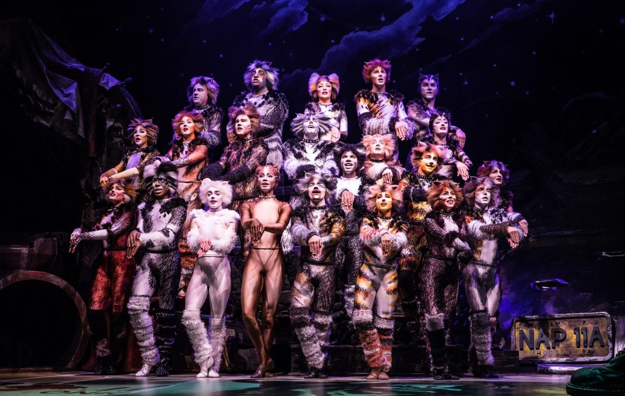 A new touring production brings a refreshed 'Cats' to Shea's Buffalo Theatre. (Photo by Michael Murphy)