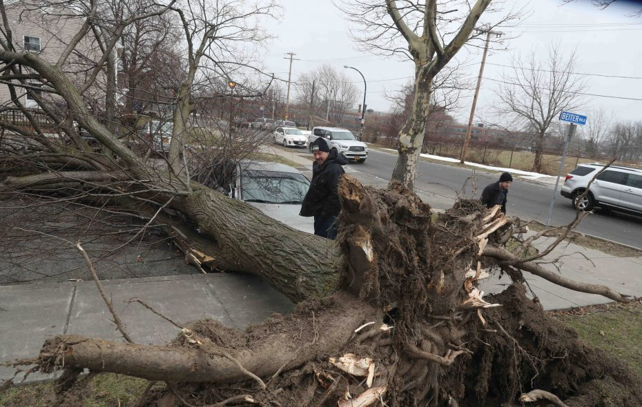 Bill Ernest, left, of the Buffalo Municipal Housing Authority looked at a tree toppled by high winds Feb. 8 at Langfield Homes at Langfield and Eggert Roads. Wind gusts in Buffalo reached 57 mph on Feb. 8. They could be 15 mph stronger on Sunday, forecasts show.(John Hickey/Buffalo News file photo)
