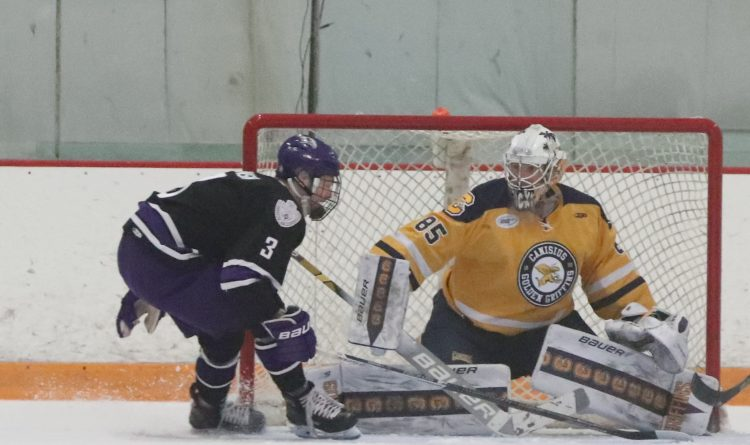 American Hockey League The Buffalo News