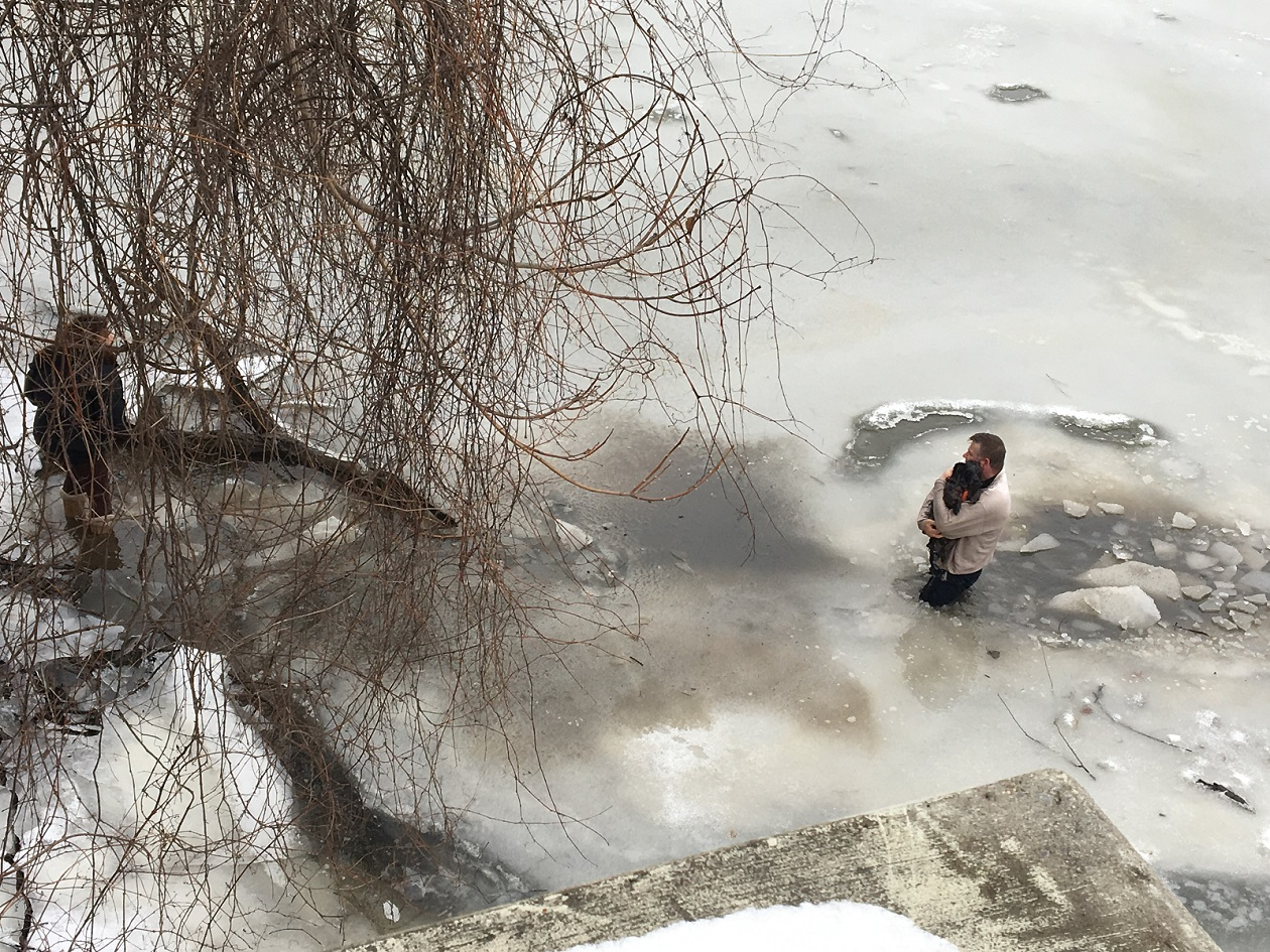 Man 'didn't think twice' about saving stranger's dog from icy waters
