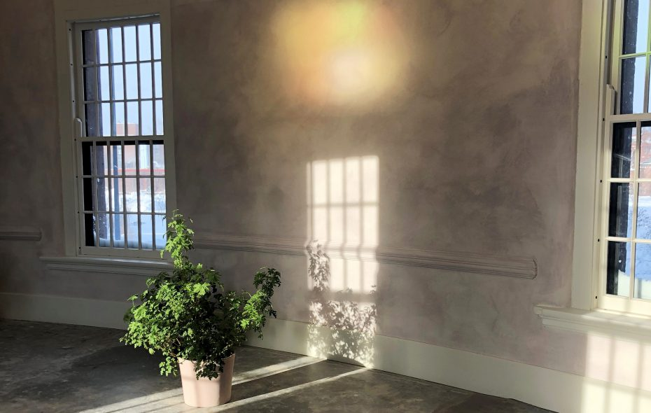 The walls in the corridor that links 100 Acres restaurant with Hotel Henry is made from a special light-refracting mix colored by from the gardens. (100 Acres: The Kitchens at Hotel Henry)