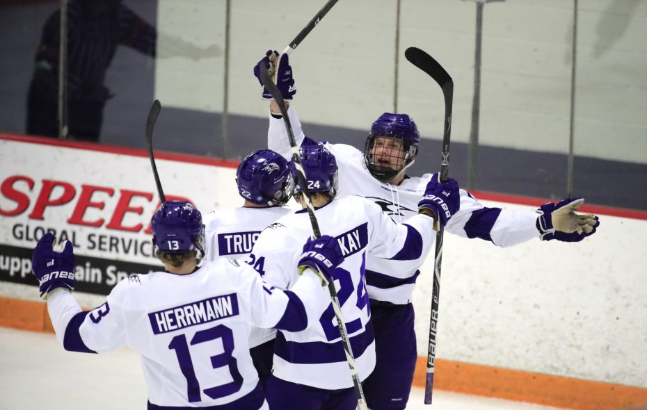 Niagara forward Jared Brandt celebrates his goal against Canisius. (Harry Scull Jr./Buffalo News)