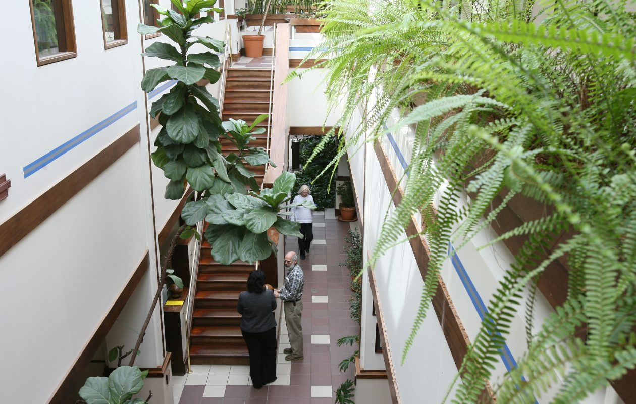 The Lancaster headquarters of Ecology and Environment features many environmentally friendly concepts.  (Buffalo News file photo)