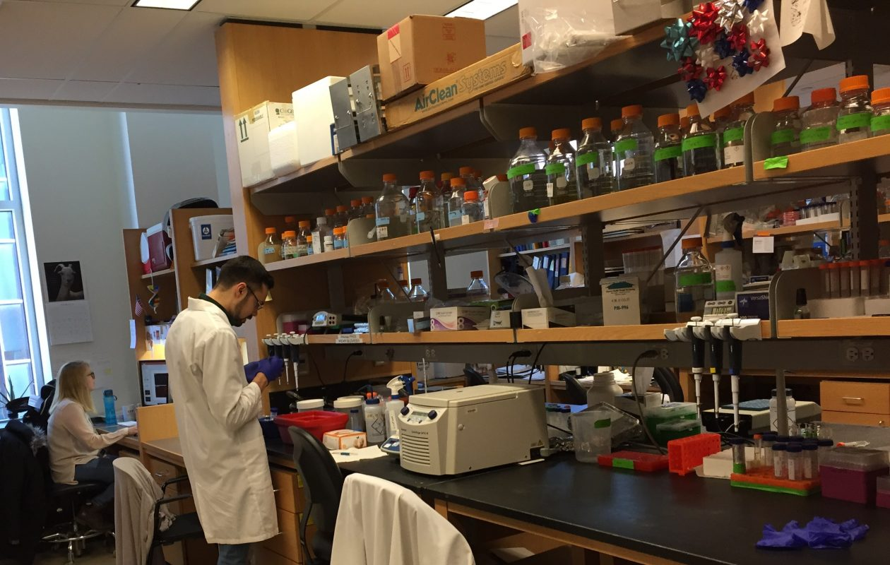 The Hunter James Kelly Research Institute at UB is receiving more than $2 million in federal grants over the next five years. (Barbara O'Brien/Buffalo News)
