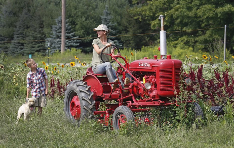"Bringing people to Tioga Valley Farm, in West Falls, to pick up Community Supported Agriculture (CSA) farm shares is ""our favorite way to market vegetables,"" says co-owner Beth Leipler, pictured last year aboard her 1948 Farmall tractor with son Dominic and Meesha, the family dog, nearby. (Robert Kirkham/News file photo)"