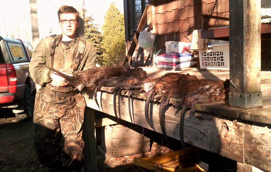 Andrew Zysek with a good catch of muskrats. (Submitted photo)